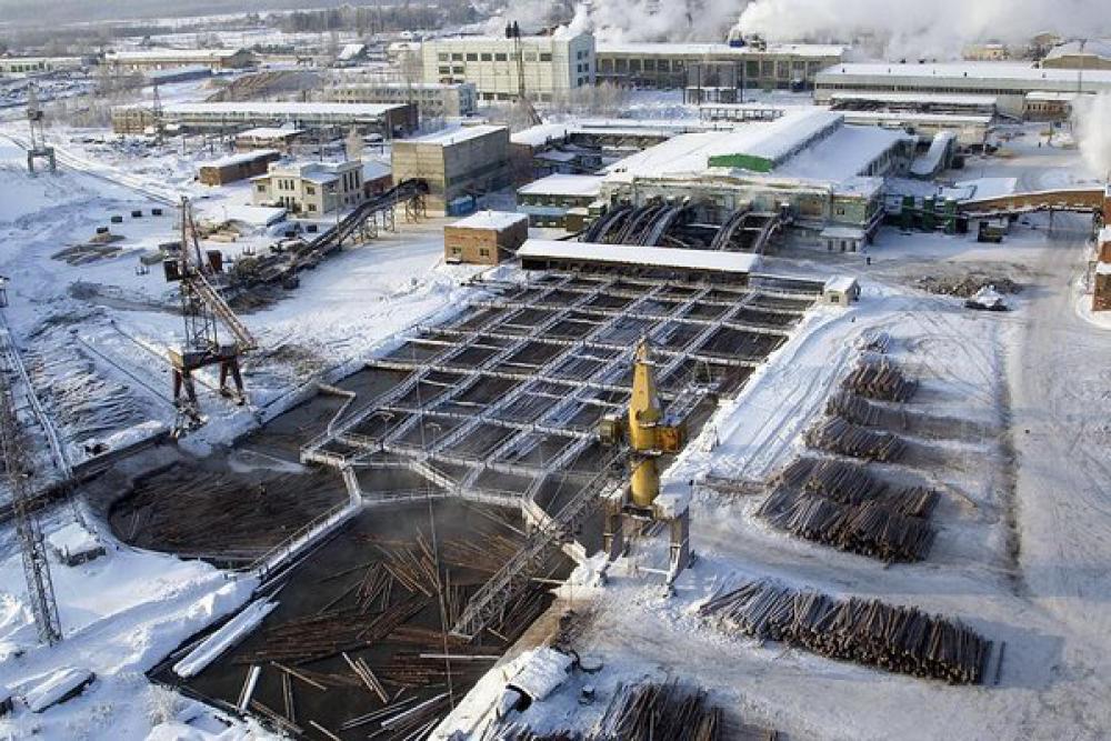 Разработка СТУ для лесоперерабатывающего комбината «ОРИС» Пермского края